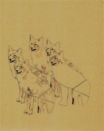 Coyote Decoys